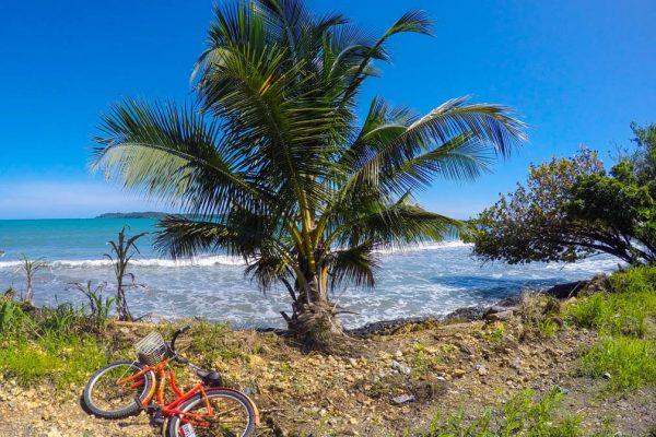 Taalreizen Bocas del Toro